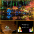 「アキウルミナ2021~AKIU LUMINA~」開催